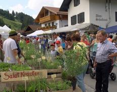 Krauterfest01